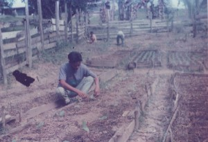 Agriculture Training