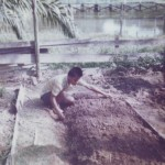 Preparing Vegetable Plot