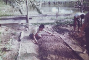 Preparing Vegetable Plot
