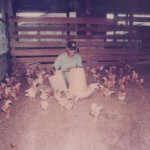 Learning To Rear Chicken